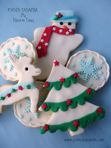 2010 NEW YEAR (CHRISTMAS)  COOKIES