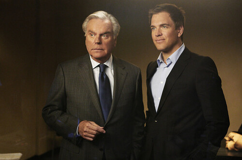 Robert Wagner and Michael Weatherly