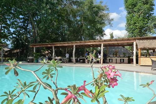 Allegro Poolside Buffet