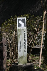 円海山ふれあいの小径(At Mt. Enkaisan road of Fureai, Japan)