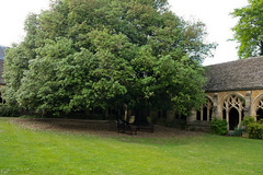 Christ Church college at Oxford - cloisters