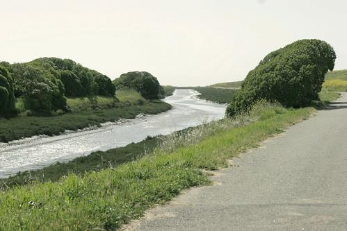 Path #1: Hayward Regional Shoreline