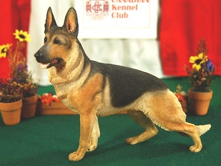 Country Artists: German Shepherd