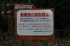 怒りの看板(Signboard of angry at Shikinomori park, Japan)