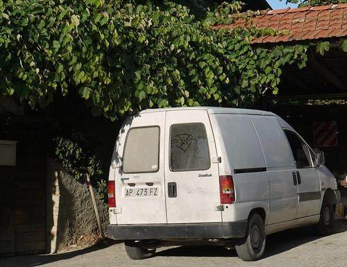 Who is white van man?