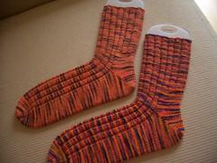 Trev's Koigu Socks
