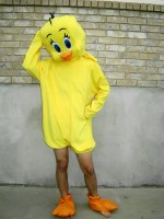 Tweety Bird Costume