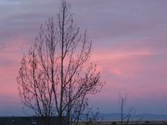 Sunset1c.JPG
