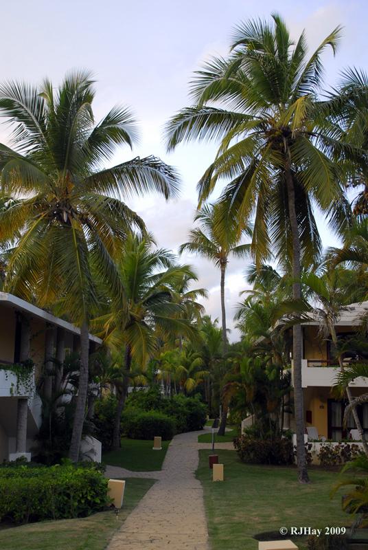 Grounds of the Bavaro Princess Resort Complex