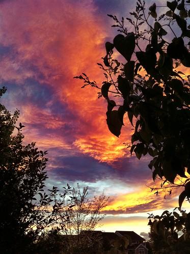 Sunset Watching.