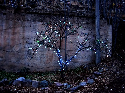 A decorated blue light tree in an abandoned lot