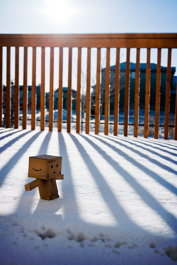 003/365:  Danbo Discovers Snow.