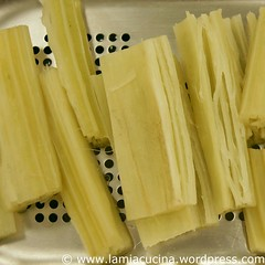 Cardoni fritti 1_2010 01 18_4770
