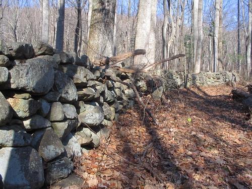 Stone wall, Shenandoah National Park