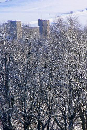 Lewes Castle Snow & Trees Jan 2010