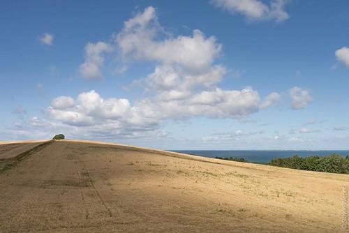 sjaelland-field-hill