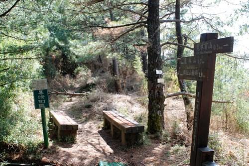 這是鹿林山和鹿林前山之間的鞍部