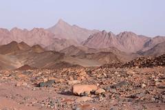 Dry river bed in Arabian desert