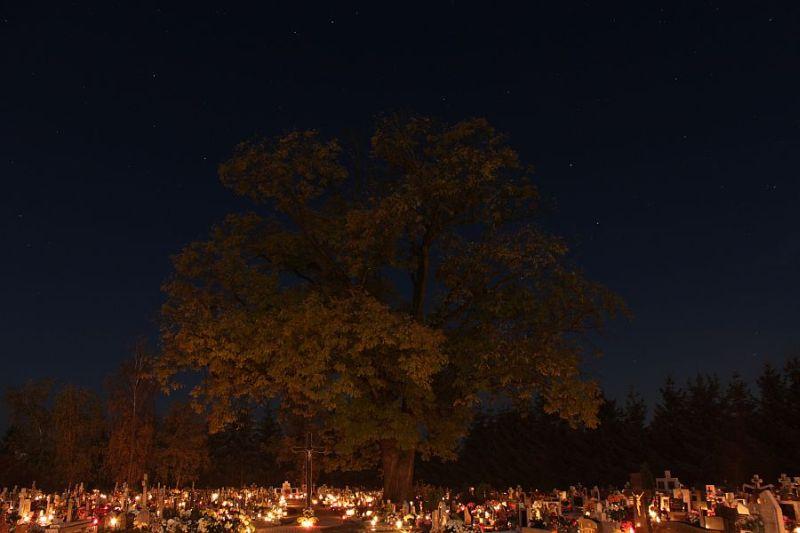 cmentarz, cemetery