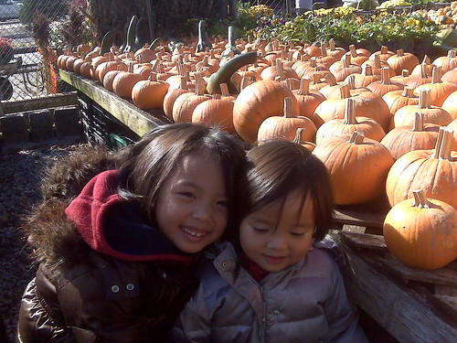 picking pumpkins to paint for Beans' party