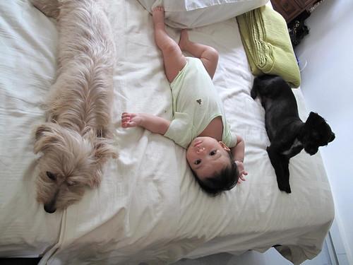 Mama's fav trio