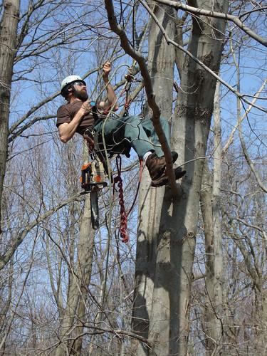 Climbing #2