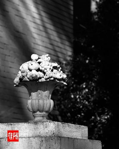 AE1P_Orf-Acros100_GarlandSculpt01