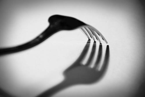 Week 15: Fork