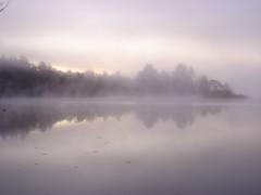 Morning mist rising