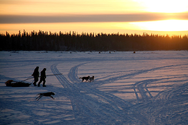 Alaska Landscape - 03