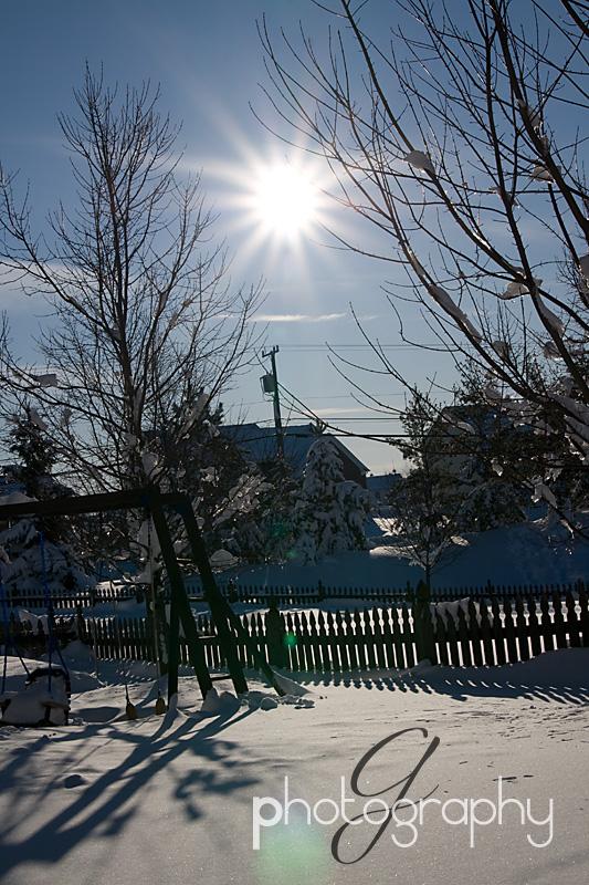 Sunburst in the snow