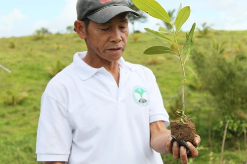 Man demonstrating how to plant a seedling