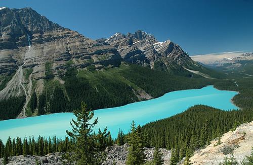 Peyto Lake, Banff National Park, Alberta.