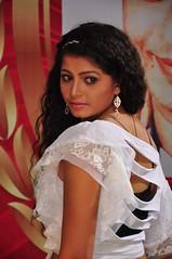 Indian Actress DISHA POOVAIAH Hot Photos Set-1 (16)