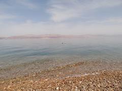 Dead sea Ein Gedi public beach
