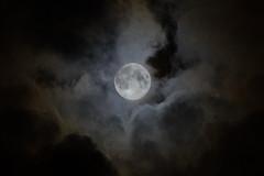 Eerie Halloween Type Moon