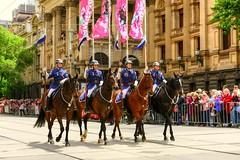2013 Melbourne Cup Parade