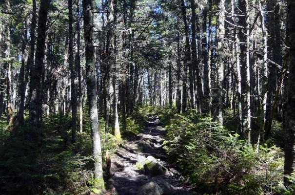 Pemi Loop Hike on Franconia Ridge