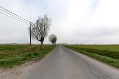 Flanders Fields - Veurne (Furnes)
