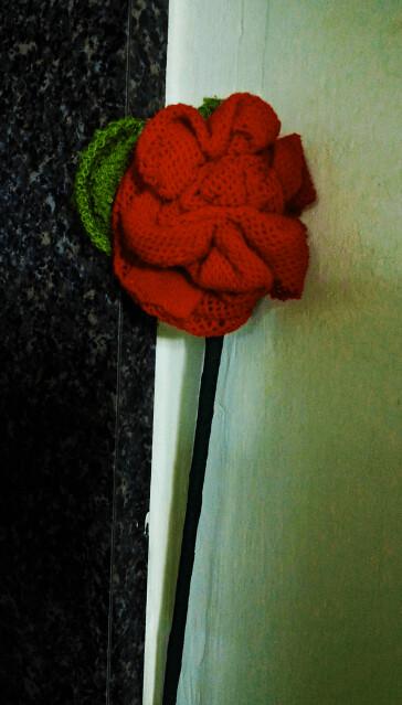 Fishnet Rose