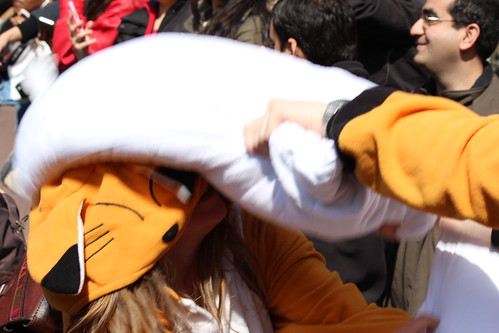 Pillow Fight 2014