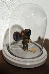 3rd Biennial Taxidermy show07