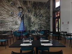 129 - 2017 04 23 - Nieuw theater restaurant