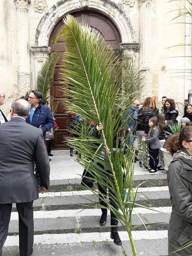Domenica palme 2017 (22)