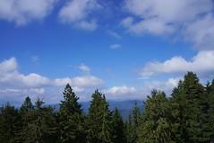 Vedere spre vest din Curmatura Builei