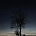 mörkerfotografering