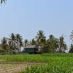 16 Kampot 60