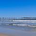 Ocean City Landscape
