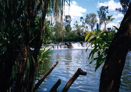 Mataranka Falls - Roper River