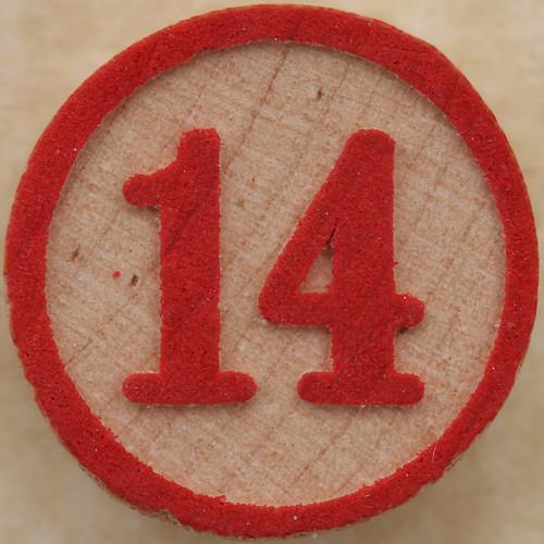 Bingo Number 14
